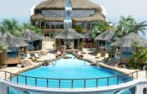 Pool and Coconuts Yacht Island Paradise