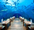 L'Ithaa Undersea Restaurant, Conrad Hotels & Resorts, Maldives