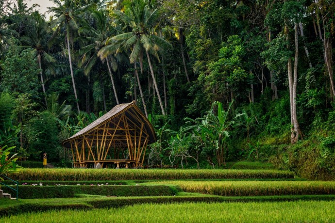 Four seasons Ubud Bali Dharma Shanti Yoga Bale 2