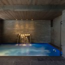 Le Collectionist Chalet Walter Fontaine piscine